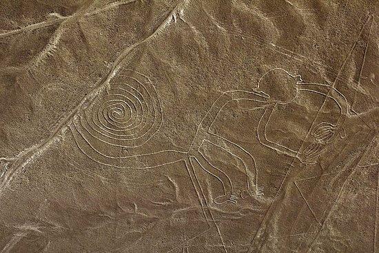 Full Day Tour Nazca Lines & Ballestas...