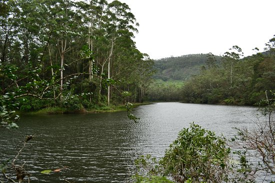 Sita Devi Lake照片