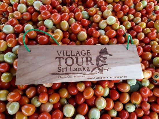 Welcome to Village Tour Sri Lanka