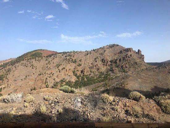 Incontournable à Tenerife