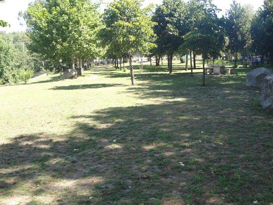 Parque Novo Amieiro Galego: Parque de merendas