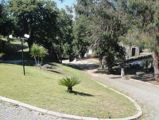 Parque Novo Amieiro Galego: Interior