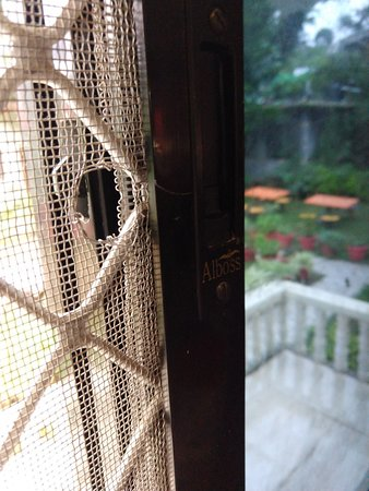 This is supposed to be mosquito net in rooms window.