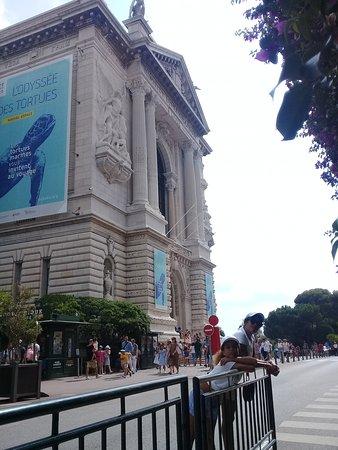 Oceanographic Museum of Monaco and Aquarium Admission Ticket: L'ingresso del Museo Oceanografico: è in un maestoso palazzo!