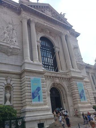 Oceanographic Museum of Monaco and Aquarium Admission Ticket: Il palazzo del Museo Oceanografico di Monte Carlo