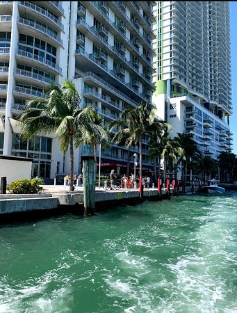 Water Taxi Miami: American Social