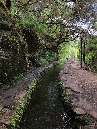 Левада 25 водопадов