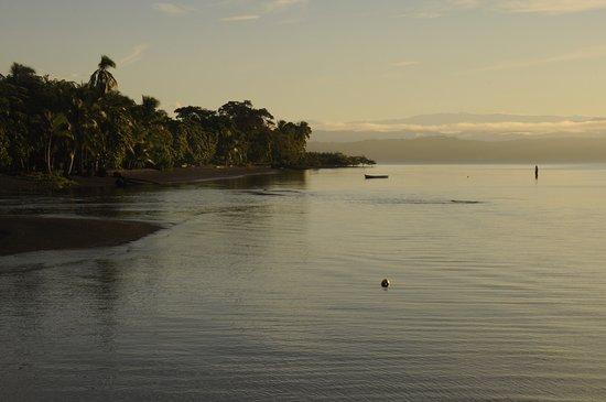 Puerto Jimenez, Kostaryka: Caminos de Osa