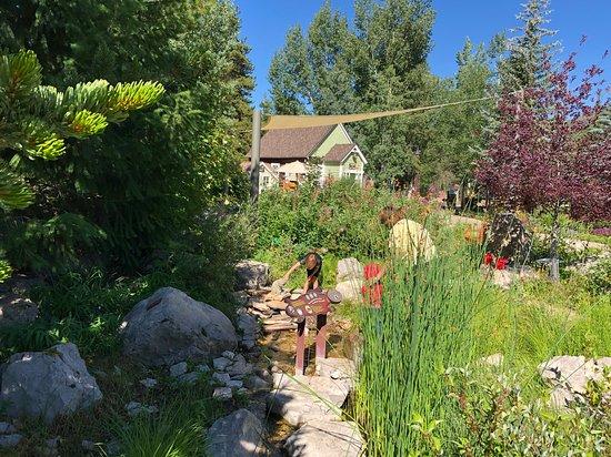 Great Children S Garden Picture Of Betty Ford Alpine Gardens