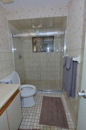 טיטוססוויל, פלורידה: Master bathroom
