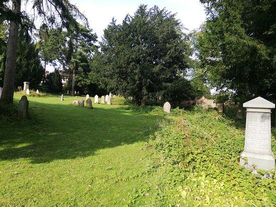 Basingstoke, UK: 20-06-2019_Holy Ghosts Cemetery_10