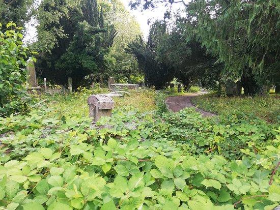 Бейзингстоук, UK: 20-06-2019_Holy Ghosts Cemetery_17