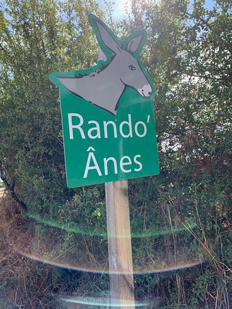 Rando'Anes. Le départ