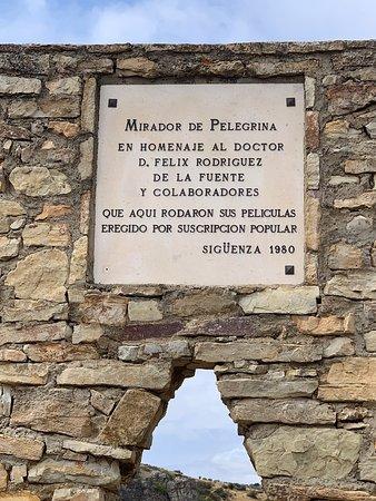 Bilde fra Pelegrina