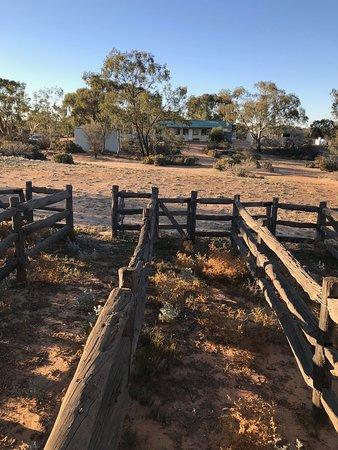 Kinchega National Park: The Woolshed at Kinchega