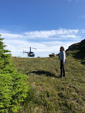 49 North Helicopters: A break in the action as a addon within the Comox glacier tour, worth it!