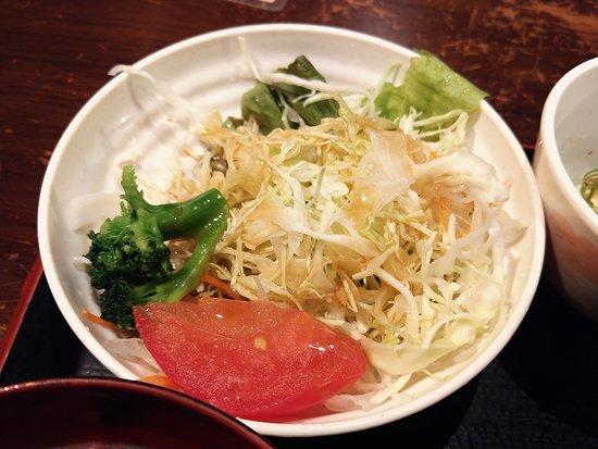 Kyohorumonkuraotesujiten: サラダ。