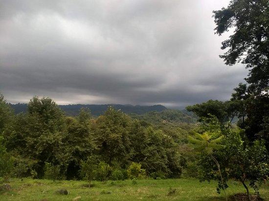 Teocelo, Mexico: Vista desde la Finca