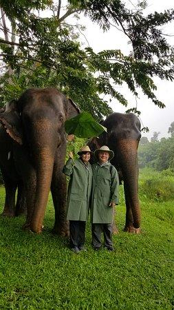 Walking with elephants at Anantara