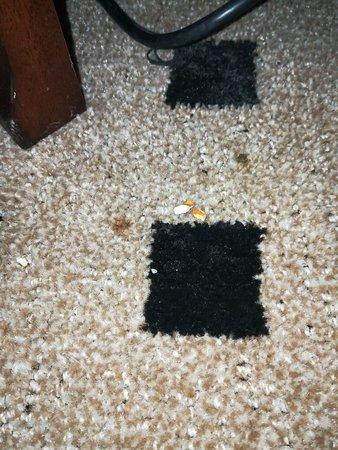 Popcorn on the floor