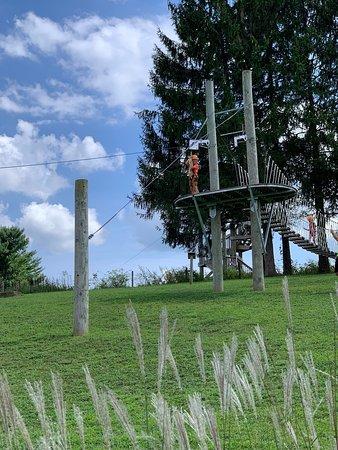 Dragonfly Zipline Adventure FOR KIDS