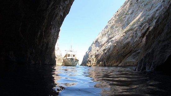 SFT Skiathos Fishing Trips