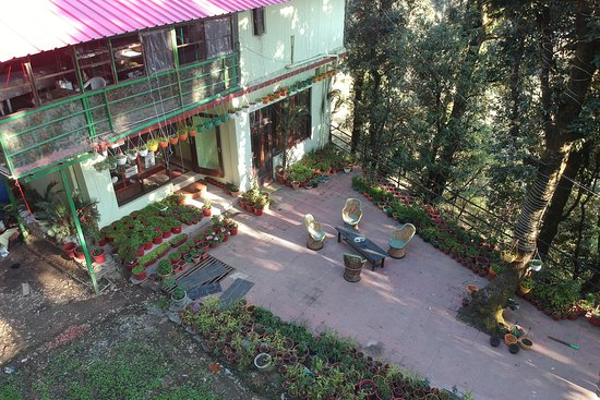 Photos de Chinmay Yoga Center - Photos de McLeod Ganj - Tripadvisor