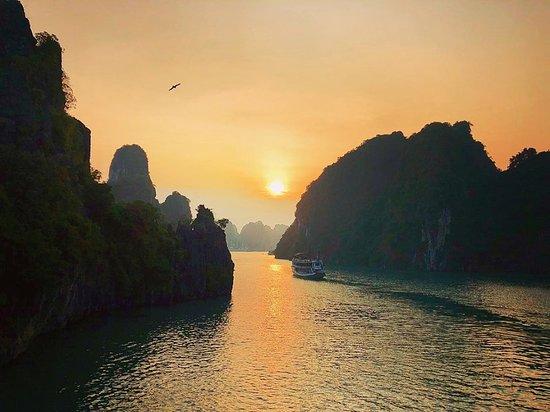 Indochine Junk: Indochina Junks