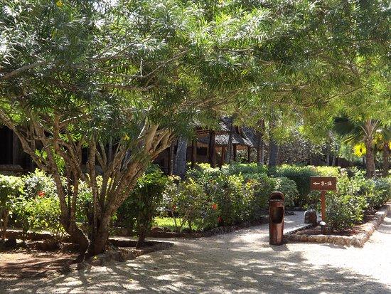 Veraclub Zanzibar Village: garden