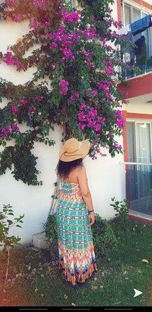 Sunshine Holiday Resort: Harika foto çekilecek doğa harikası