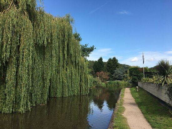Hopwas, UK: Birmingham and Fazeley Canal. Lovely view with bordering weeping Willow tree.