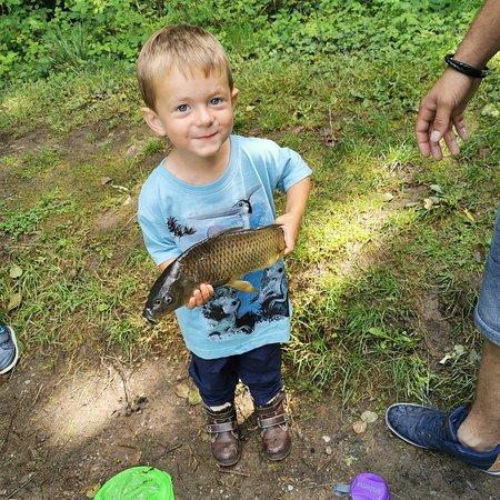 Catching carp at the fishing lake