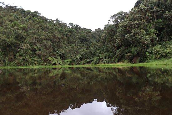 La Estrella, Colombie : Laguna Encantada, una caminata extenuante pero gratificante. Puedes subir por pavimento y bajar mojándote por la quebrada. Muy agradable.