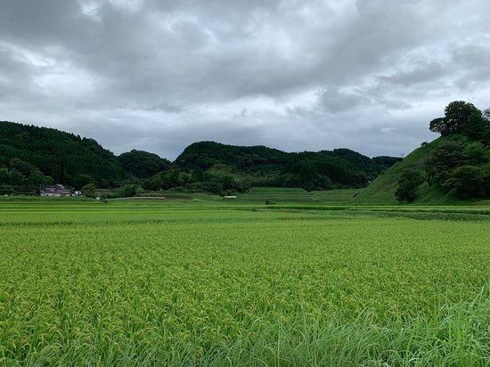 Kur Park Nagayu