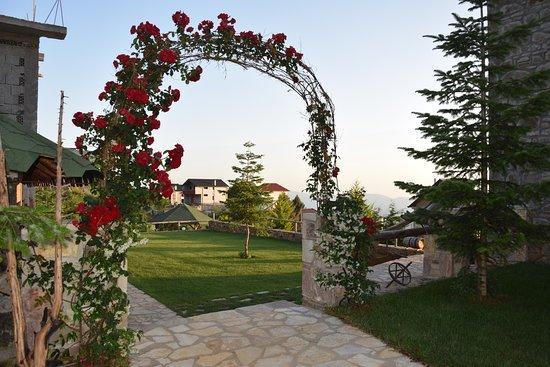 Gjinari, Albania: nature