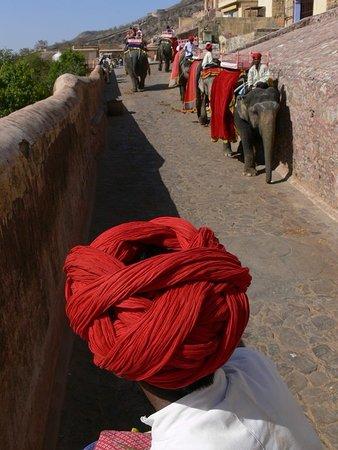 la salita per raggiungere Amber Fort  può essere fatta con jeep, a piedi, oppure seduti sul dorso di elefanti bardati, che fanno da navetta per i turisti che scelgono questa opzione..Negli ultimi anni, per tutelare questi pacifici pachiderma da troppi affaticamenti, il governo ha imposto un numero limitato di salite e discese giornaliere. Pertanto chi sceglie gli elefanti per la salita, deve raggiungere il forte nella prima mattinata.