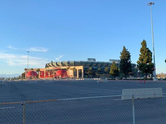 Angel Stadium of Anaheim照片