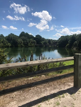 Wall Springs Park