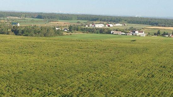 Honfleur, Canada: ferme visible à partir d'une montgolfière ..Montréal -Québec Montgolfière