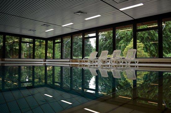 Hille, เยอรมนี: Unser Schwimmbad mit großzügiger Fensterfront.