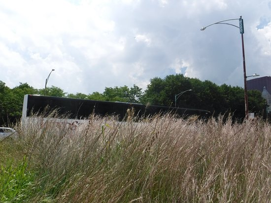 Grant Park, IL: there's a lovely balance of wildness and order