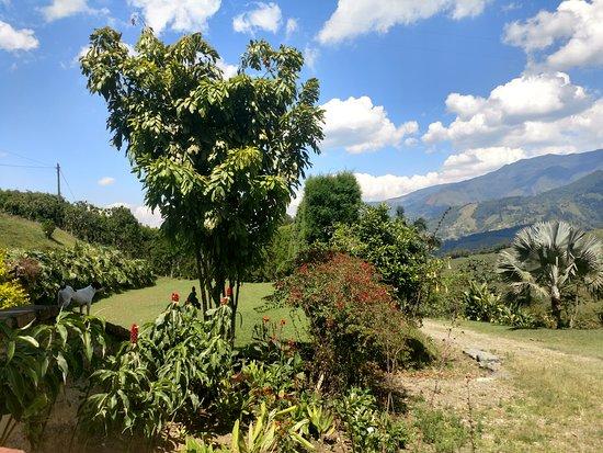 Caldas, Colombia: Nuestros mágicos paisajes.