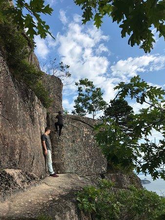 Precipice Trail: Ladder