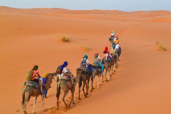 Incredible Desert Trip