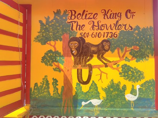 Belize King of the Howlers