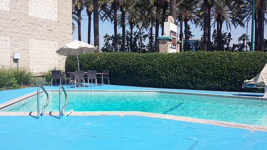 Pool - Anaheim Discovery Inn & Suites at the Park Image