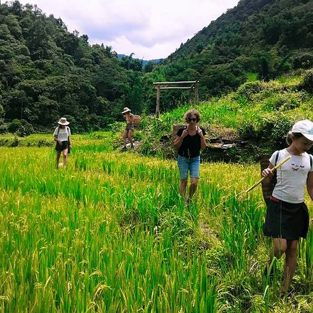 Experience the local life with the local people in Ta Phin Village , Sapa, Vietnam