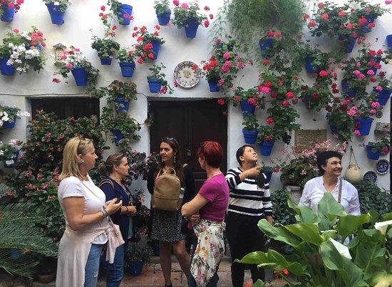 Visitas privadas y grupos reducidos a los Patios cordobeses