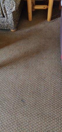 Nasty carpet