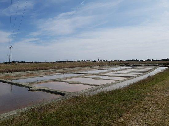 Marais salant Les Valencières
